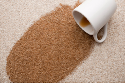 stevens chem-dry removes tough stains, coffee stains can be removed
